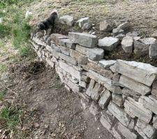 Sur-évélation muret en pierre sèche en cours.