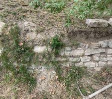Sur-évélation muret en pierre sèche en cours. Avant désherbage.