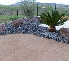 Voici quelques photos de notre petit jardin réalisé par un paysagiste. les deux oliviers étaient déjà sur place les autres plantes fournies par le paysagiste. Il manque les brises vue. avant la pelouse, côté voisin,