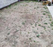 Terre végétale sèche