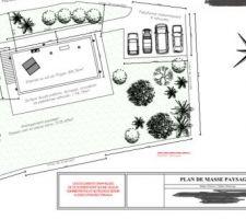 Plan de masse terrain avec projet