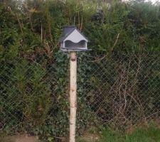 Fait maison pr nos beaux oiseaux