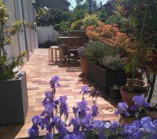 Terrasse devant avec iris