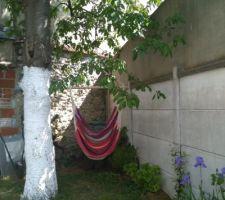 Cerisier avec hamac