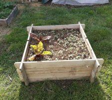 Carré potager pour radis et betterave rouge