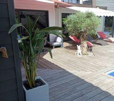 La terrasse... Esprit vacances pour nous.