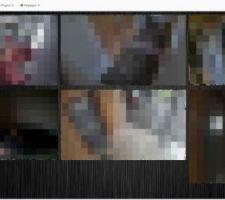 Visualisation Jeedom - caméras