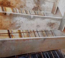 L escalier aura un espace cote mur pour que.nous puissions l isoler aussi