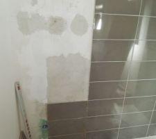Prolongement faïence salle de bain.