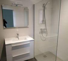 Equipements sanitaires de la salle d'eau