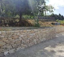 Mur en pierres à J+2