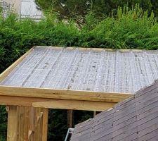Le toit du carport