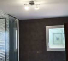 Le luminaire est posé dans la salle de bain
