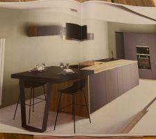 A défaut d?avoir une maison , nous avons déjà le plan de la cuisine avec le rendu !!! Nous en sommes très content .