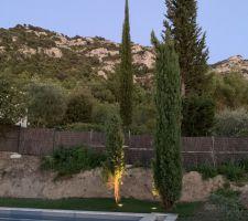 Éclairage cyprès