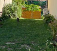 Le jardinau bout de deux ans et demi