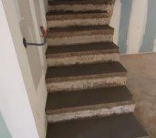 Mise à niveau escalier béton