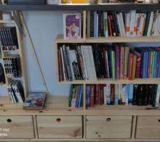 Creation bibliotheque sur mesure. Reste la peinture a faire !