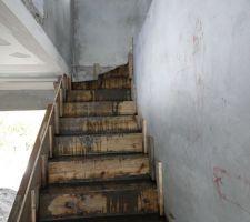 Création et coffrage escalier
