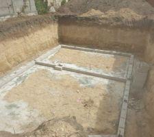 Vide sanitaire en cours