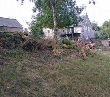 Muret coté jardin nettoyage