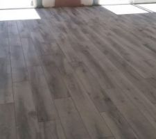 Carrelage effet bois gris RdC avec prolongement terrasse