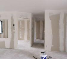 Peintre plafond fait  electricite fait  plomberie fait