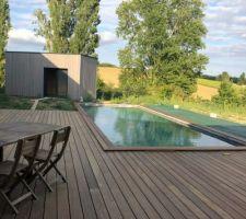 Terrasse. Piscine et pool house