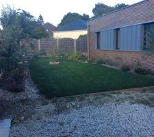 Le jardin après 3 mois.