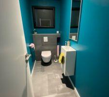 Nos WC bleu canard