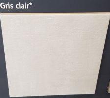 Carrelage grès cérame émaillé Arte One Infinity gris clair 45 x 45 cm Salle de bain suite parentale .