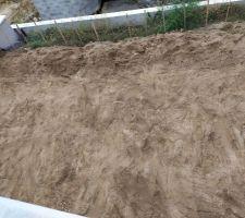 """Terre végétale tamisée amendée puis ensemencée avec gazon """"sol sec et ultra résistant"""" puis ajout de l'engrais bio et passage du rouleau à gazon."""