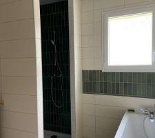 Pose Robinet de douche et faïence SDB