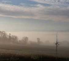Brumes matinales gersoises