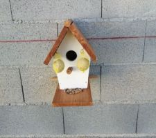 Mise en place de la cabane à oiseaux