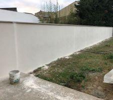 Enduit projeté gratté du mur mitoyen arrière gauche
