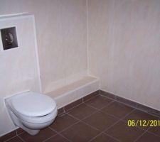 Les toilettes dans la salle d'eau