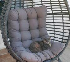 Quand tu sors ta chaise avec ce beau temps et qu'elle est occupée aussitôt installée !