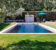 La vue sur la piscine de Vincent + 7 autres photos