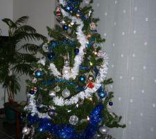 Sapin de Noël 2010