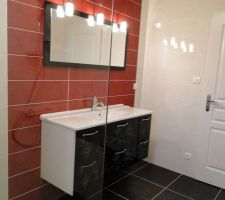 salle de bains meuble et miroir installes