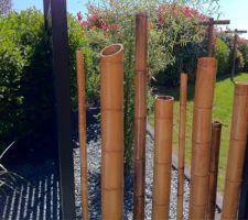 Séparation du jardin et de l'entrée avec des panneaux de bois et canne de Bambou de différents diamètreset hauteurs