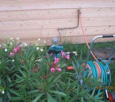 pompe pour l arosage issu de la cuve de recuperation d eau
