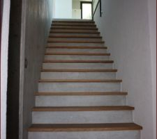 Photos et id es escalier d 39 interieur desservant le sous - Deco descente d escalier ...