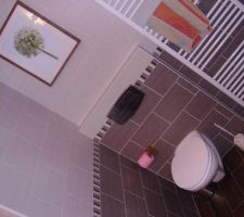 Salle de bain (toilette)