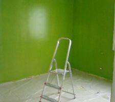 peinture verte laquee brillante mais elle est rate la peinture est partie a moytie quand j ai enleve les scotchs