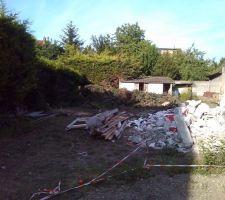 Début de la démolition de la remise et abattage des thuyas.
