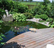 Le jardin de papy et mamy