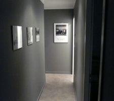 Photos et idées dégagement / couloir mur gris (209 photos)