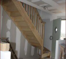 pose de l escalier en bois exotique